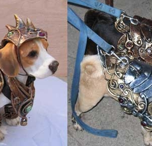 Pair of pugs in armor