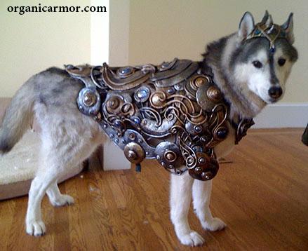 Luc in armor