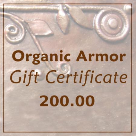 gift cert square 200